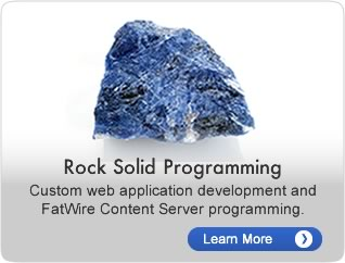 Rock Solid Programming.  Custom web application development and FatWire Content Server programming.